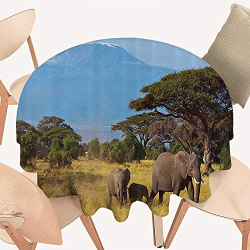 Dragonhome Picnic Circle Table Cloths Elephant mily in frt of Kilimanjaro Mounts African Savannahs Wild Nature for Family Dinners or Gatherings, 55 INCH Round