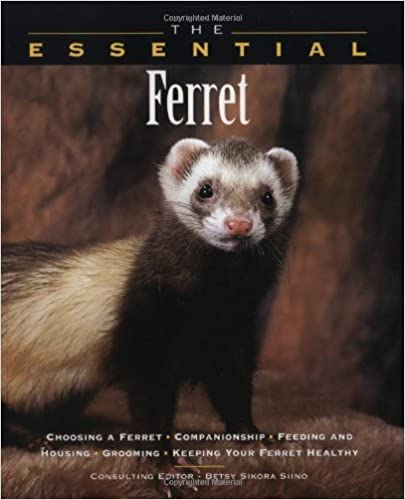 Book The Essential Ferret (Essential Guide)
