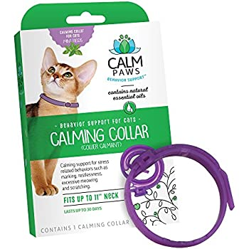 Amazon.com : SENTRY Calming Collar for Cats, Up to 15-Inch Neck, Includes Three Cat Calming