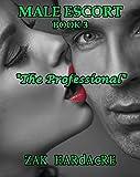 The Professional (Male Escort Book 3)