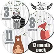 Woodland Baby Monthly Stickers - Great Shower Gift or Scrapbook Photo Keepsake
