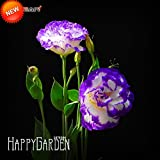 Loss Promotion!Purple Eustoma Seeds Perennial Flowering Plants Potted Flowers Seeds Lisianthus Multicolor,100 /Package,#1P919O