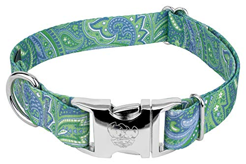 Country Brook Petz - Green Paisley Premium Dog Collar (5/8 Inch, Small)