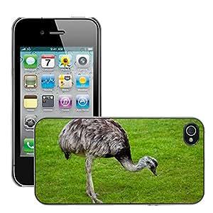 Print Motif Coque de protection Case Cover // M00154401 Antecedentes animales pico ojo de // Apple iPhone 4 4S 4G