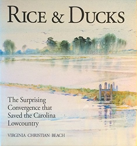 Rice & Ducks: The Surprising Convergence That Saved the Carolina Lowcountry