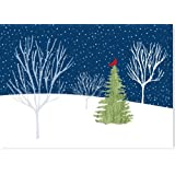 Midnight Cardinal Deluxed Boxed Holiday Cards (Christmas Cards, Holiday Cards, Greeting Cards)