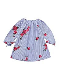Staron  4T Infant Baby Girls Floral Embroidery Striped Long Sleeves Dress Outfits