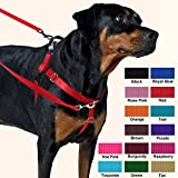 2 Hounds Design Freedom No-Pull Harness Only, No Leash, Royal Blue, Medium (1-Inch Wide)