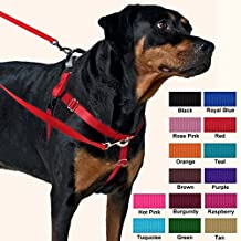 2 Hounds Design Freedom No-Pull Harness Only, No Leash, Red, Small (5/8-Inch Wide)