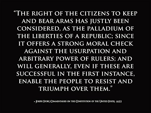 Motivational Poster Joseph Story Quote US Constitution Quotes Patriotic