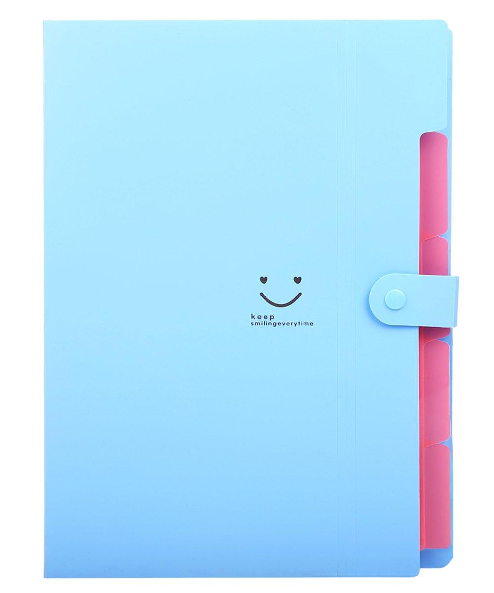 TONVER fogli A4 cartellina portadocumenti con tasche Accordion Document organizer Blue Skydue SKC001