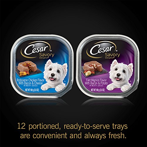 CESAR-SAVORY-DELIGHTS-Variety-Pack-Rotisserie-Chicken-Filet-Mignon-Dog-Food-Two-12-Count-Cases