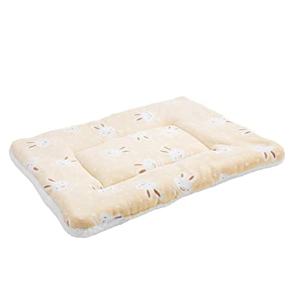Amazon.com : Lqcwd-Ped bed Pet Mats Puppy Kittens Small and Medium ...