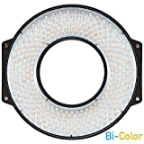 R-300 SE Bi-Color LED Photo & Video Ring Light with Lens Mount and Carrying Case