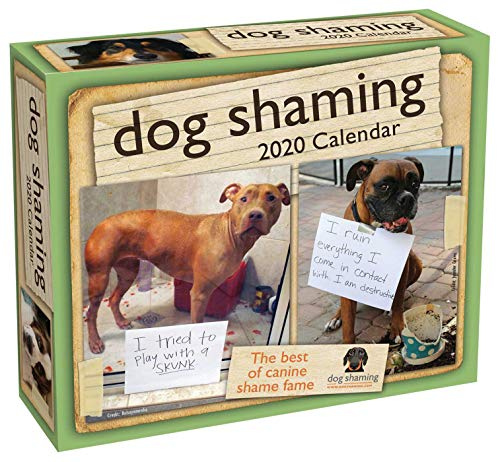 Dog Shaming 2020 Day-to-Day Calendar