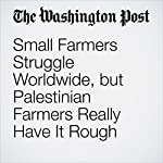 Small Farmers Struggle Worldwide, but Palestinian Farmers Really Have It Rough | Anne-Marie O'Connor