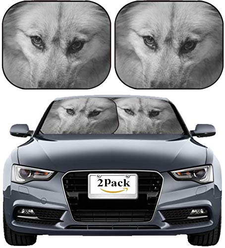 (MSD Car Sun Shade Windshield Sunshade Universal Fit 2 Pack, Block Sun Glare, UV and Heat, Protect Car Interior, Image ID: 31506958 Eyes)