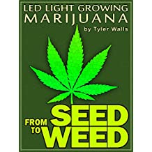 From SEED to WEED: LED light growing MARIJUANA