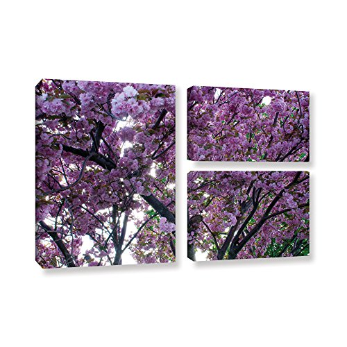 ArtWall Dan Wilson's Spring Flowers, 3 Piece Gallery-Wrapped Canvas Flag Set 24X36 from ArtWall