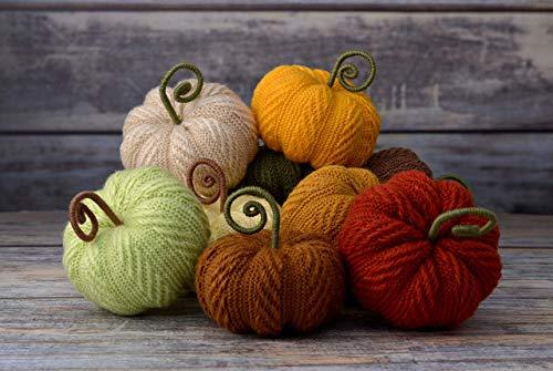 Knit Pumpkin (Pumpkins Set of 10 Stuffed Knit Pumpkins Fall Autumn Thanksgiving Halloween Holiday Ornaments Home Decor Table Card Holder Seasonal Decor)