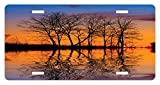 zaeshe3536658 Nature License Plate, Landscape from Mother Earth Sunset by the Lake with Fall Trees Forest Life Image, High Gloss Aluminum Novelty Plate, 6 X 12 Inches.