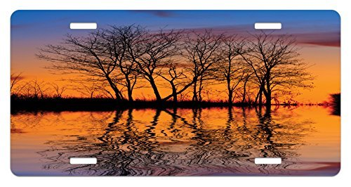 zaeshe3536658 Nature License Plate, Landscape from Mother Earth Sunset by the Lake with Fall Trees Forest Life Image, High Gloss Aluminum Novelty Plate, 6 X 12 Inches. by zaeshe3536658