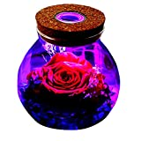 Flower Preserved with LED 4 Colors Light Real Flower In Glass Jar Preserved Rosed & Never Withered Roses for Love Ones, Birthday Gift, Valentine's Day, Anniversary Day, Holiday Present