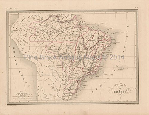 (Brazil Antique Map Malte Brun 1850 Original Brazilian Home Decor History Ancestry Heritage Gift Idea )
