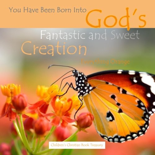Read Online Everything Orange: God's Fantastic and Sweet Creation: Baby's First Look Around Bible Story Book ebook