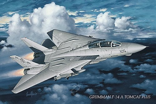 Grumman F-14 Tomcat Aeroplane - MAXI LAMINATED/ENCAPSULATED POSTER - Measures approx. 36 x 24 inches (91.5 x - Tomcat F-14 Wall