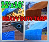 Heavy Duty Brown / Blue Tarp 12 ft x 16 ft (3.6 m x 4.8 m) - Maximum Weather Protection by Tarps USA