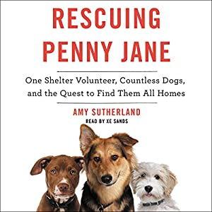 Rescuing Penny Jane Audiobook