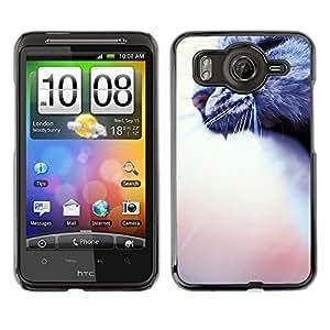 A-type Arte & diseño plástico duro Fundas Cover Cubre Hard Case Cover para HTC G10 (Yawn Roar Cat Grey House Blurry Peach)