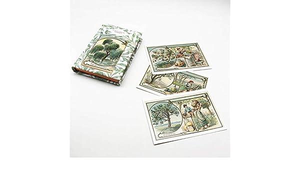 Album illustré pour 600 cartes postales.