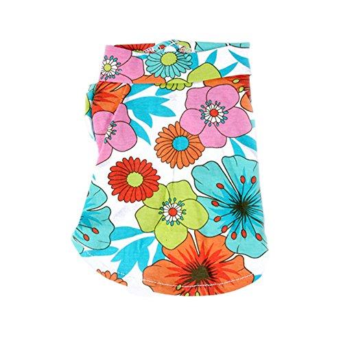 PanDaDa Clothes Hawaiian Clothing Beachwear