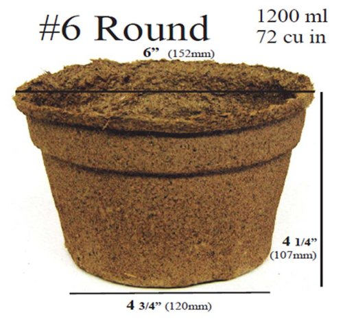 100 x (6 Inch Round) Eco-Friendly CowPots Cow Pots For Seeds Starting Transplants 100% Natural and Biodegradable - Develop Healthier Roots - Pots Adds Nutrients To Soil by MySeeds.Co