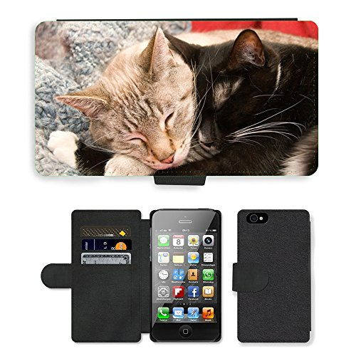 Just Phone Cases PU Leather Flip Custodia Protettiva Case Cover per // M00127859 Chats Peluches Mignon Rencontres Furry // Apple iPhone 4 4S 4G