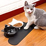 Petknows Pet Cat Bowls - Cat Food Bowls - Cat Dish - Cat Feeding Bowls Set of 2 with Silicone Pet Feeding Mat