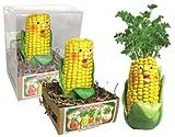 Grow a Head Veggie Planter Corn/Parsley