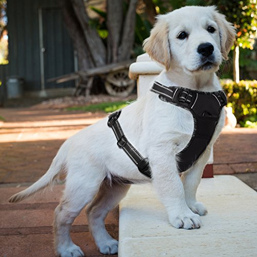E-PRANCE Soft Front Dog Harness No Pull Pet Vest Harness Adjustable Reflective Easy Walking Small Medium Large Dogs, Black ()