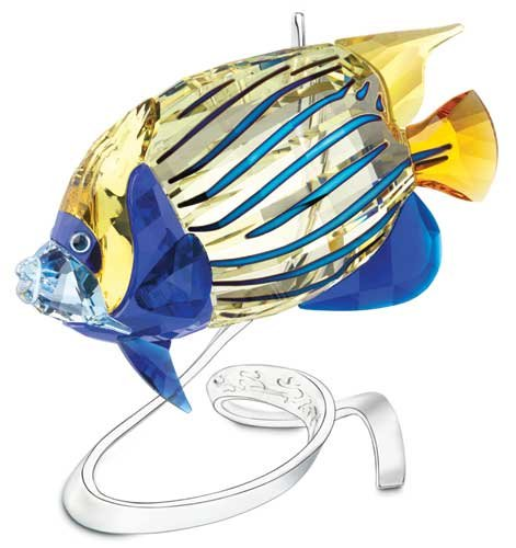 Swarovski 1072590 Emperor Angelfish, Jonquil (Fish Swarovski)
