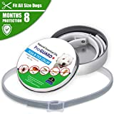 Flea and Tick Collar for Cats&Dogs, Waterproof & Adjustable Flea and Tick Control