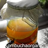 Large Organic Kombucha Scooby with Liquid Starter 1 Class Free Delivery to UK by Kombuchaorganic®