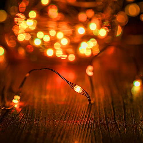 Kohree LED String Lights,USB Powered Multi Color Changing String Lights with Remote,50leds Indoor Decorative Silver Wire Lights for Bedroom,Patio,Outdoor Garden,Stroller,DecorTree.(16.4ft) by Kohree (Image #4)
