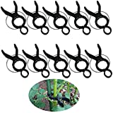 Zmmyr 10Pcs Plastic Plant Clips Tomato Orchid Plant Vine Standing Clip Support for Climbing Plants (Large)
