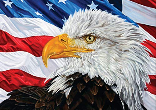 DIY 5D Diamond Painting Kit for Adult Kids, Full Drill Eagle American Flag USA Pride Embroidery Painting Dotz for Home Wall Decor Painting Arts Craft 12x16 Inch ()