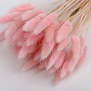 Lopkey Artificial Tail Grass Dried Flower Bouquet Dried Tulip Flower Home Decoration,50pcs 106