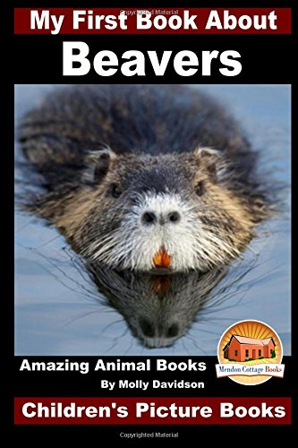 Download My First Book About Beavers - Amazing Animal Books - Children's Picture Books PDF