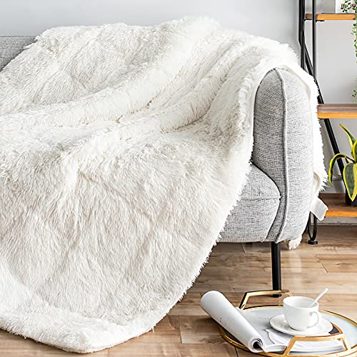 Kivik Shaggy Faux Fur Weighted Blanket 15lbs for Adult,Snuggly Longfur Sherpa Plush Heavy Bed Throw Cozy and Fluffy Warm Blanket for Couch,Dual Side Cream 48