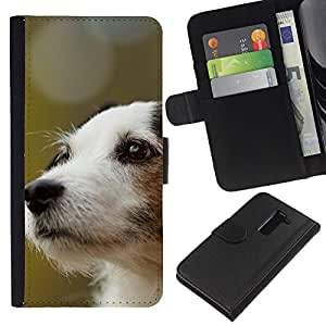 EJOY---La carpeta del tirón la caja de cuero de alta calidad de la PU Caso protector / LG G2 D800 / --Jack Russell Terrier perro canina